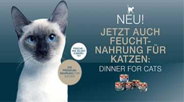 Dinner for Cats - Gratis
